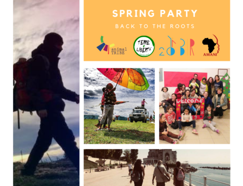 Spring party: back to the roots!